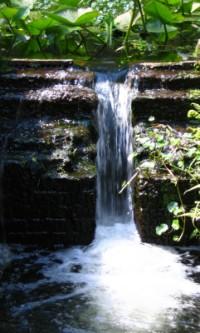 ravine-gardens-state-park2